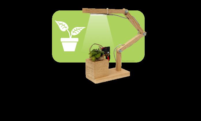 micro-bit-plant-3-02